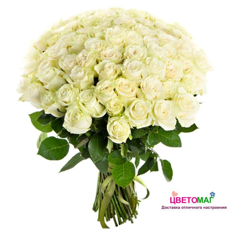 Букет 51 белая роза Россия