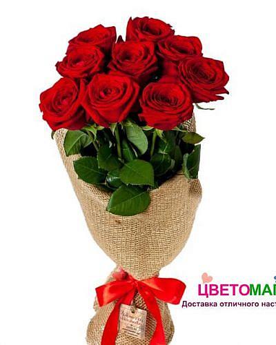 Букет 9 алых роз Nina 60 см (Эквадор)