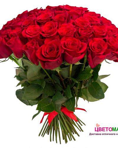 Букет из 31 алой розы Nina 60 см (Эквадор)