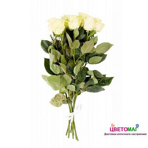 Букет 9 белых роз.
