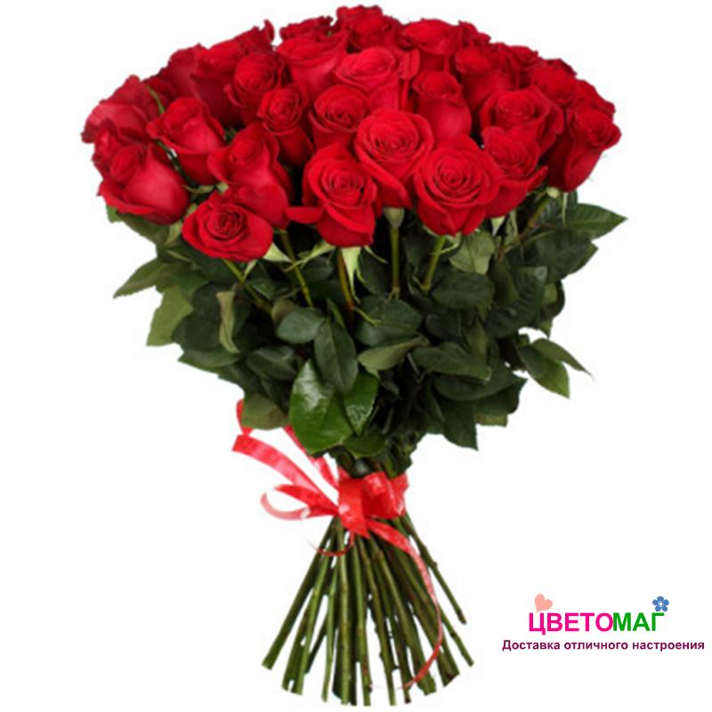 Букет из 25 красных роз Freedom 60 см (Эквадор)