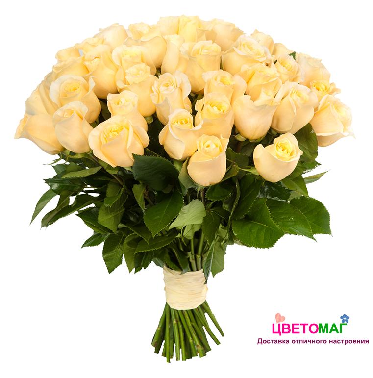 Букет 31 кремовая роза Россия
