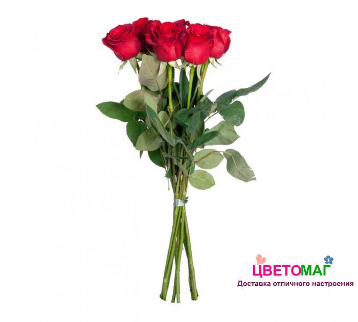Букет 7 красных роз.