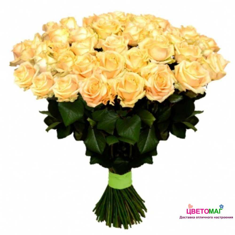 Букет 61 кремовая роза Россия