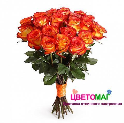 Букет 21 роза Хай Меджик
