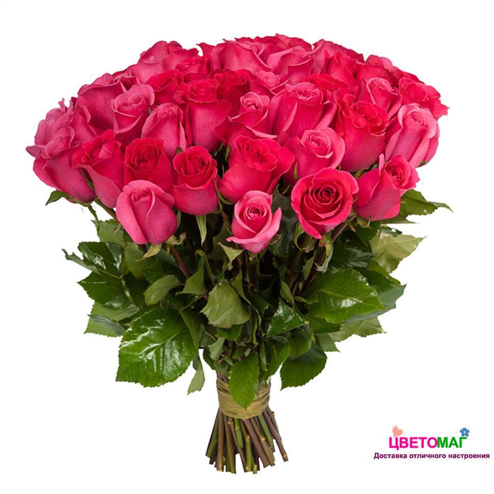 так розовые розы фото букеты красивые приезжает австралию вместе