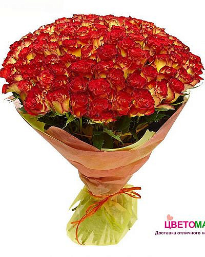 Букет 101 роза Хай Меджик 60 см (Эквадор)