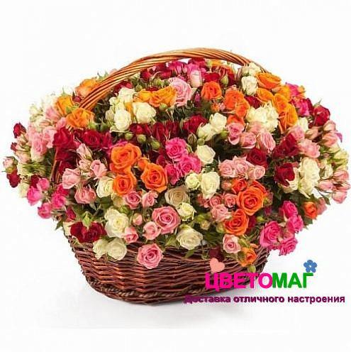 Корзина с 31 кустовой розой