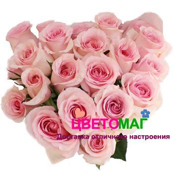 роза nena букет СПб