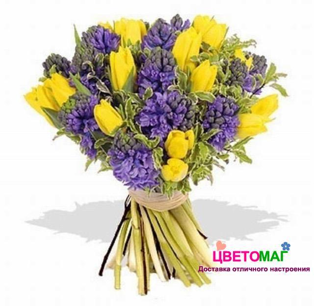 Букет из сиреневых гиацинтов и желтых тюльпанов