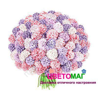 Букет из 101 белого, синего и розового гиацинта спб