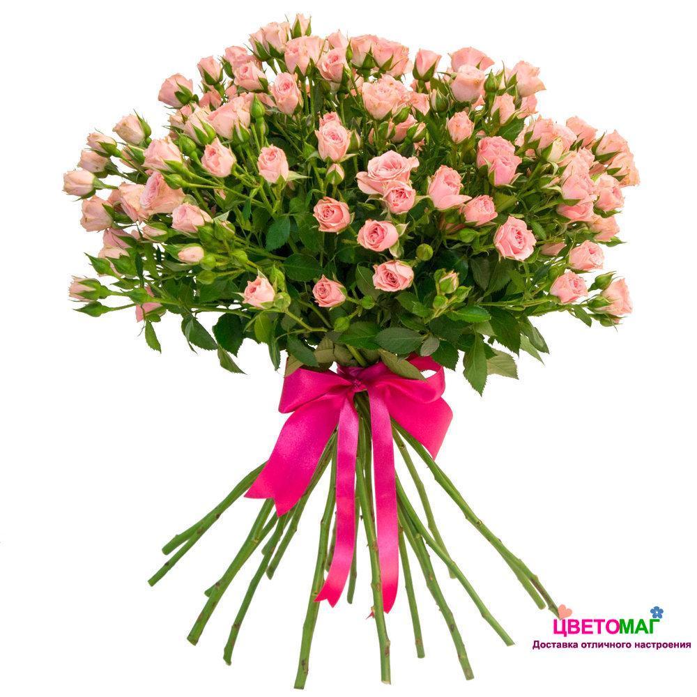 Букет из 15 розовых кустовых роз