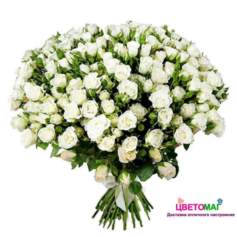 Букет из 35 белых кустовых роз