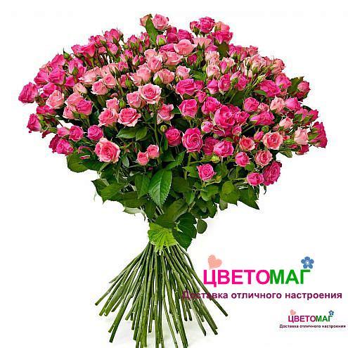 Букет из 35 розовых кустовых роз