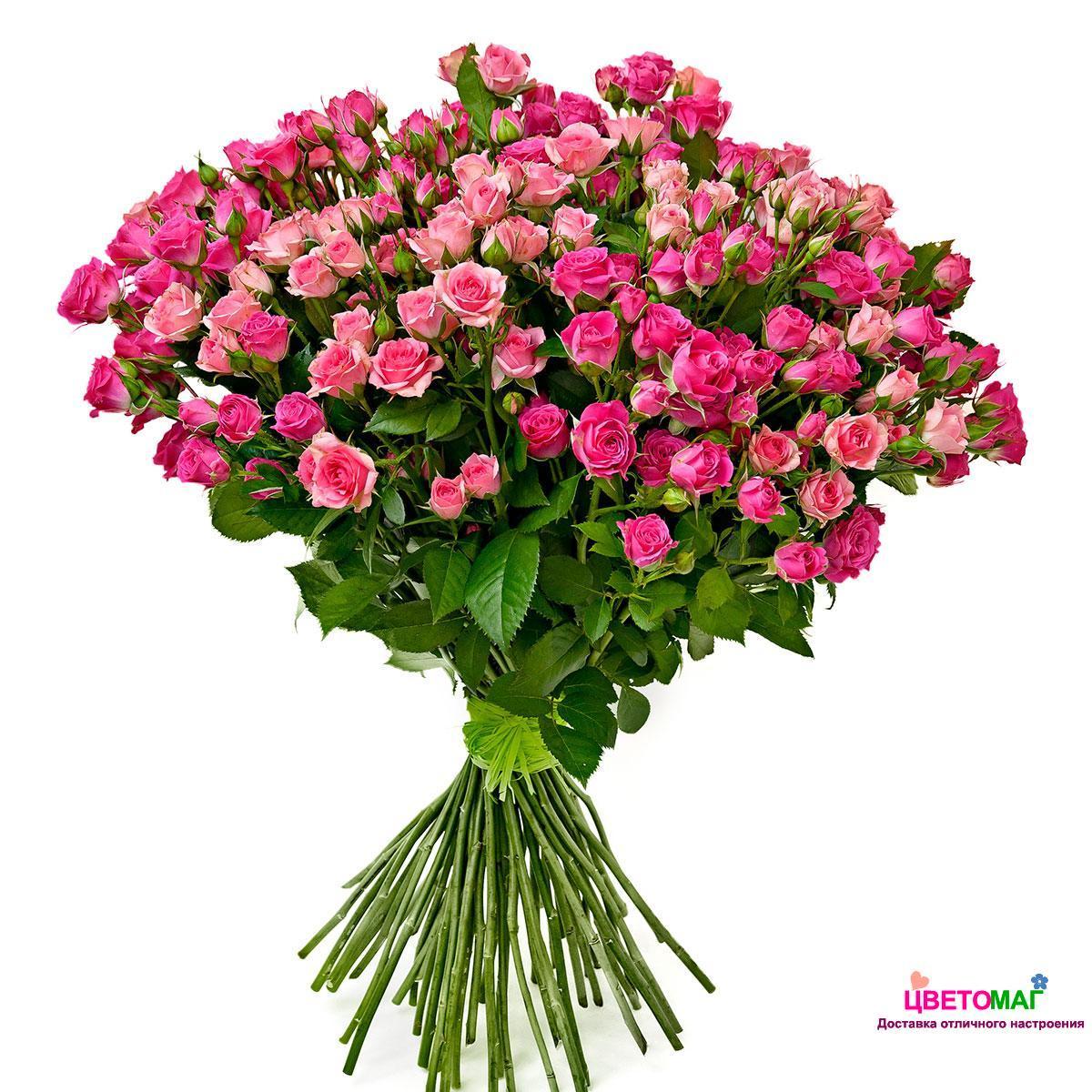 фото розы кустовые букет