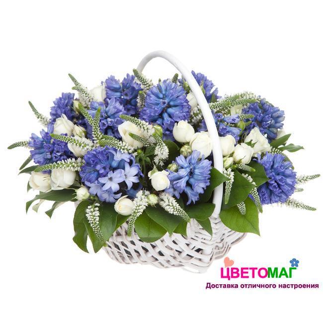 Корзина из синих гиацинтов, белых роз и вероники