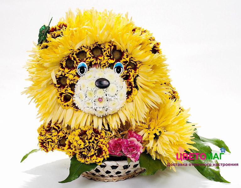 Солнечный Лев