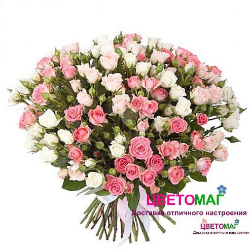 Букет из 51 розовой и белой кустовой розы