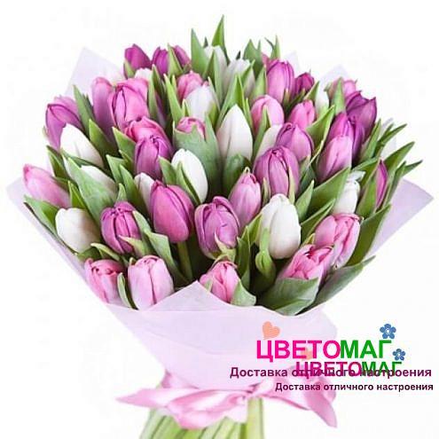 Букет из 51 тюльпана белого и розового цвета