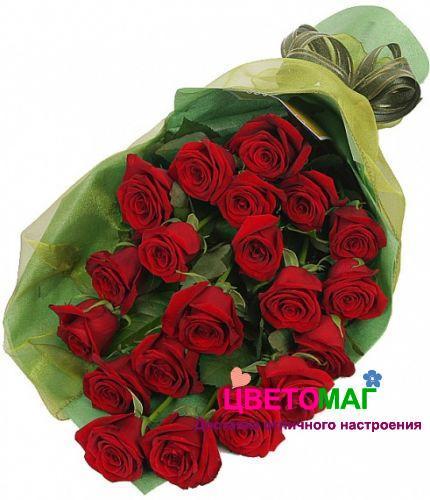 Букет из 20 красных роз