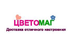 Цветомаг Logo