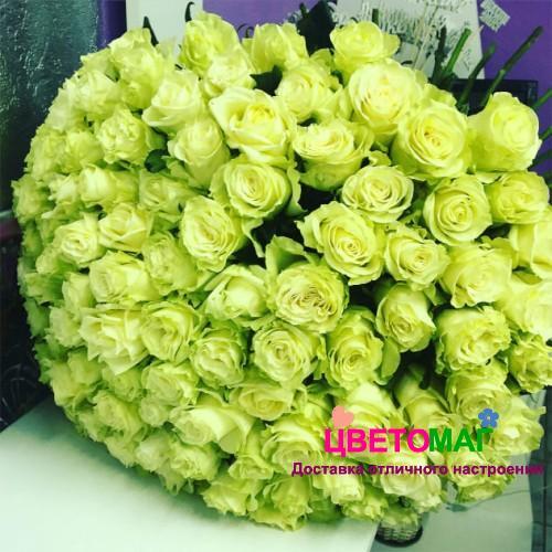 Букет из 101 зеленой розы  Lemonade 60 см (Эквадор)