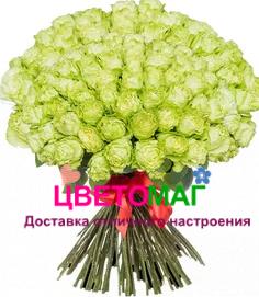 Букет из 101 зеленой розы Lemonade 70 см (Эквадор)