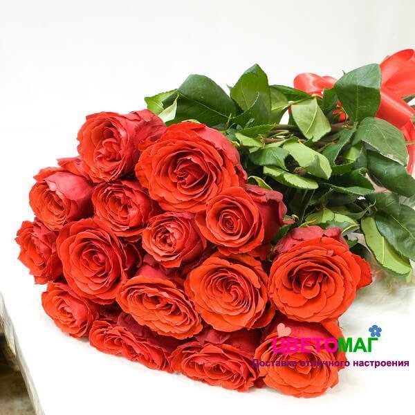 Букет из 15 алых роз  Nina 60 см (Эквадор)