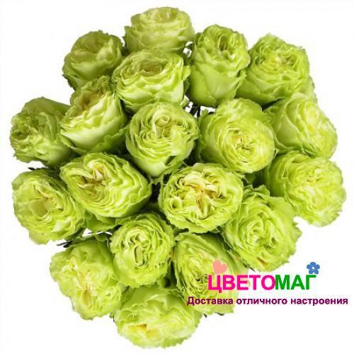 Букет из 19 зеленых роз Lemonade 50 см (Эквадор)