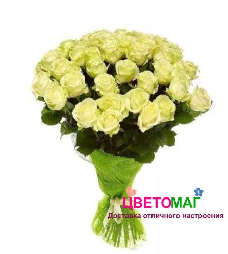 Букет из 25 зеленых роз Lemonade 60 см (Эквадор)