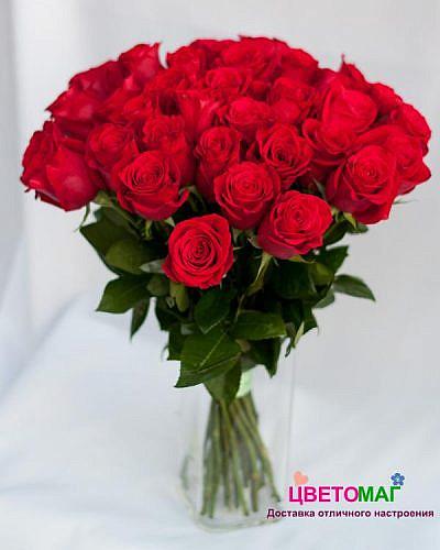 Букет из 25 красных роз Freedom 50 см (Эквадор)