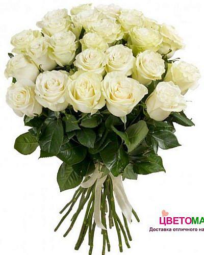 Букет из 31 белой розы Mondial 60 см (Эквадор)