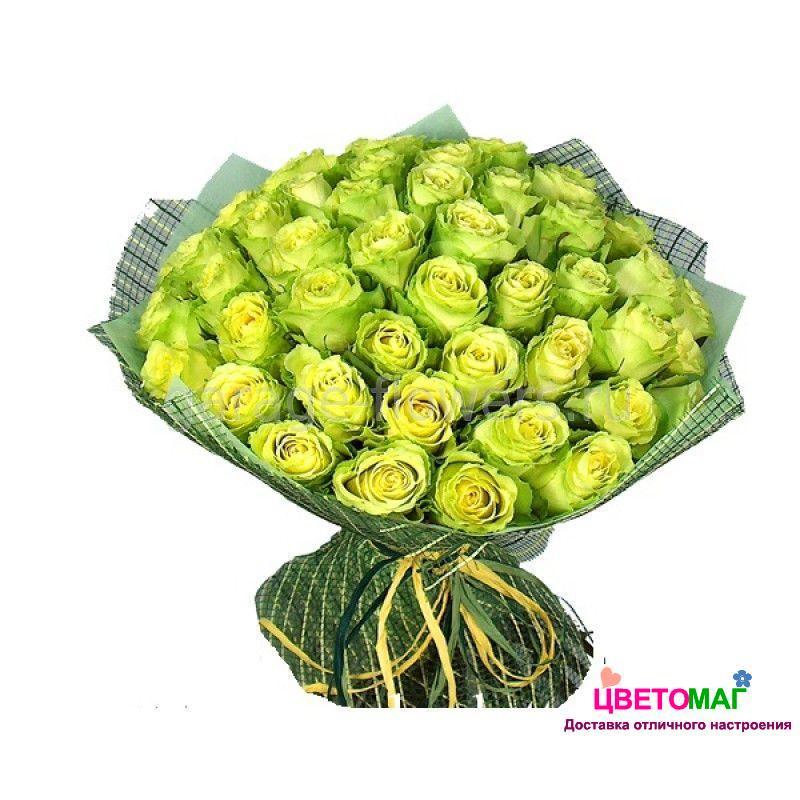 Букет из 51 зеленой розы  Lemonade 50 см (Эквадор)