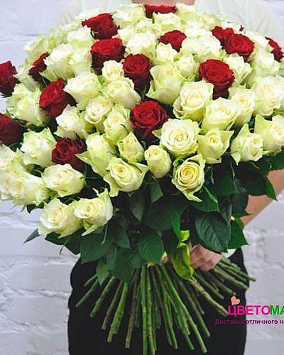 Букет 101 белая и красная роза Mondial/Freedom 70 см (Эквадор)