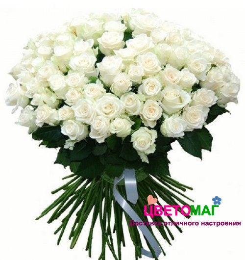 Букет 101 белая роза Vendela 60 см