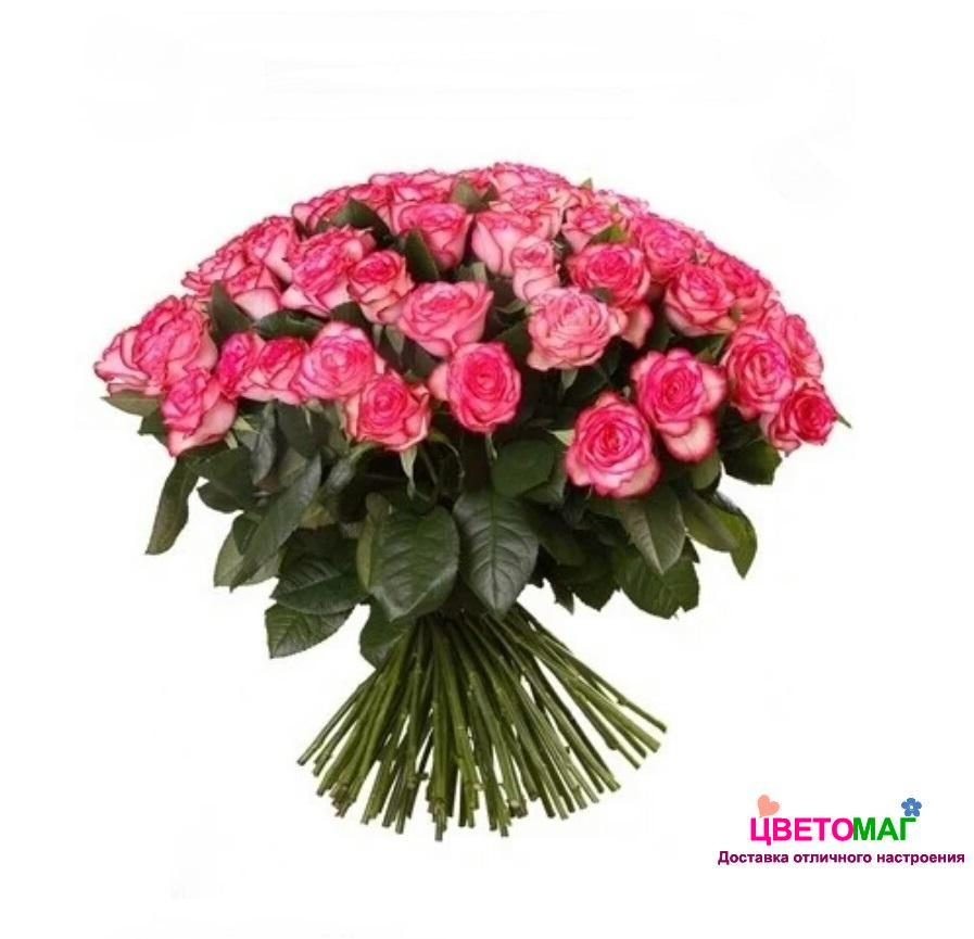 Букет 101 роза  Carousel 60 см (Эквадор)
