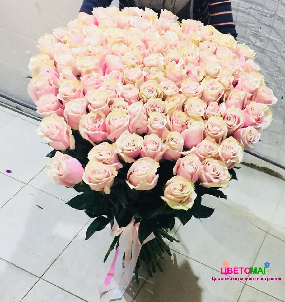 Букет 101 розовой розы  Pink Mondial 70 см (Эквадор)