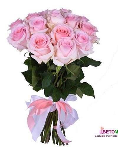 Букет 15 нежно-розовых роз Nena 50 см (Эквадор)