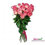 Букет 15 розовых роз Carousel 70 см (Эквадор)