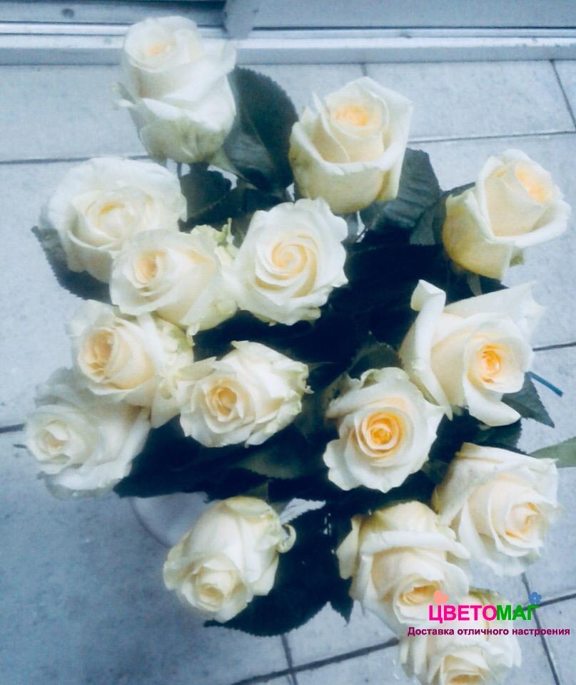 Букет 15 роз  Creme de la Creme (Эквадор) 50 см