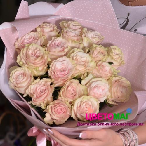 Букет 19 розовых роз Pink  Mondial 50 см (Эквадор)