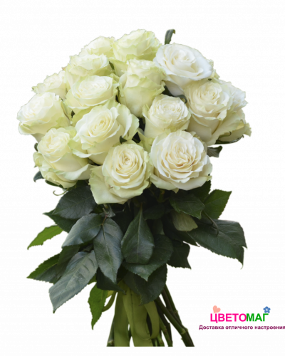 Букет 21 белая роза Mondial 50 см (Эквадор)