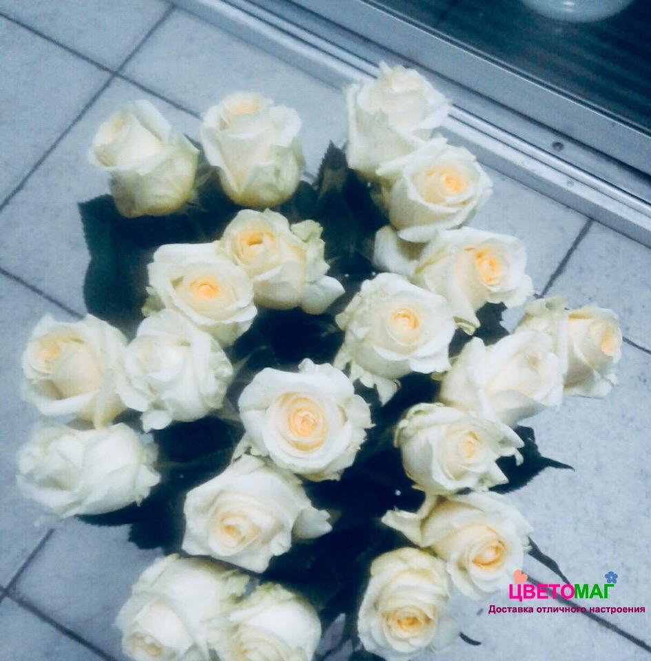 Букет 21 роза Creme de la Creme (Эквадор) 50 см