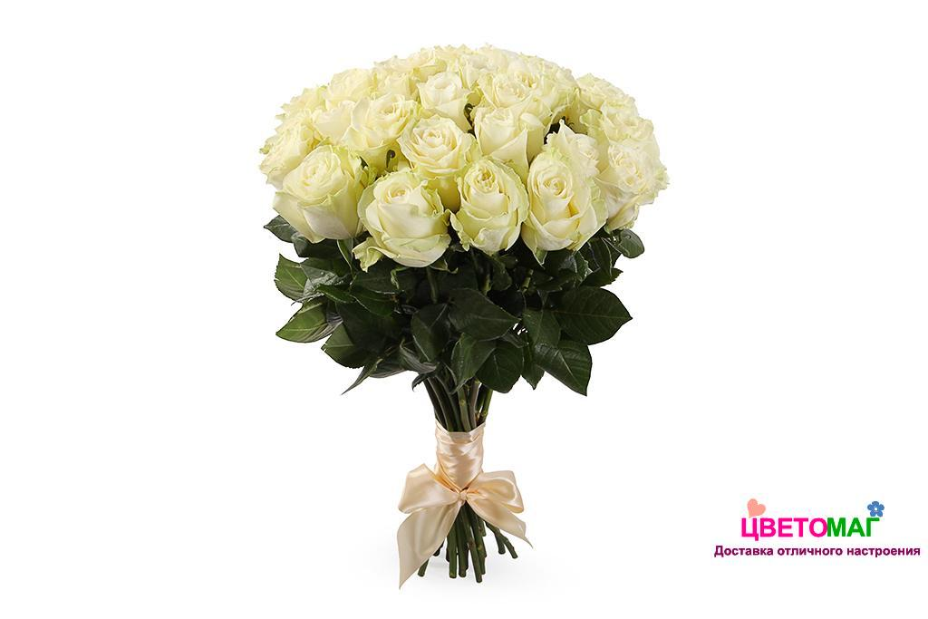 Букет 25 белых роз  Mondial 60 см (Эквадор)