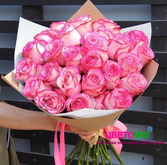 Букет 25 розовых роз Carousel 60 см (Эквадор)