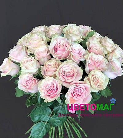 Букет 35 розовых роз Pink Mondial 50 см (Эквадор)