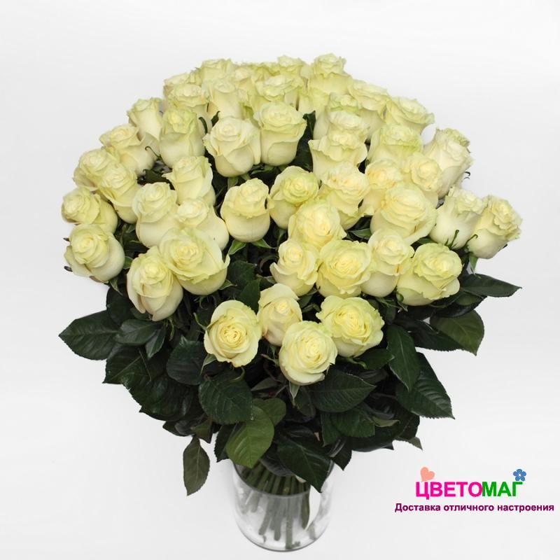 Букет 51 белая роза Mondial 50 см (Эквадор)