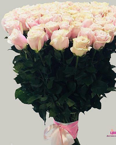 Букет 51 розовой розы Pink Mondial 70 см (Эквадор)
