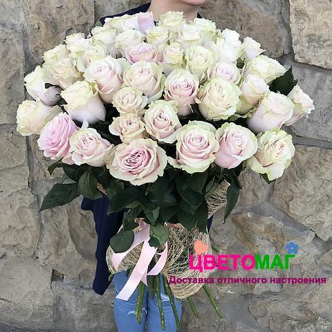 Букет 51 розовых роз Pink Mondial 70 см (Эквадор)