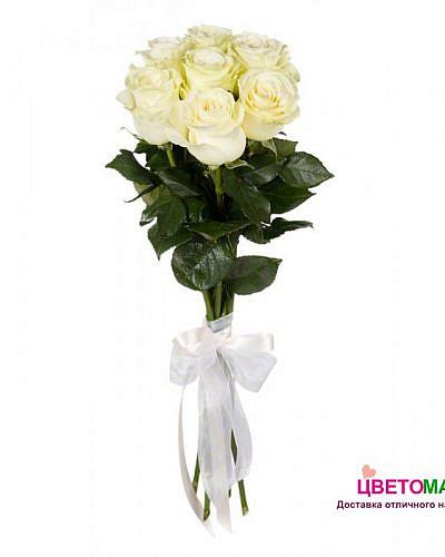 Букет 7 белых роз Vendela 70 см (Эквадор)